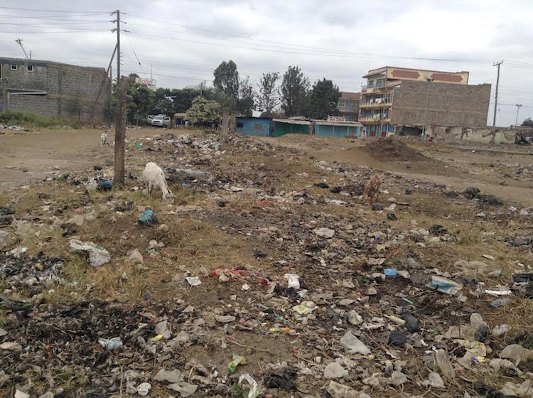 Photo: Garbage dumped in a field in the Eastland's Suburbs of Kenya's capital Nairobi.