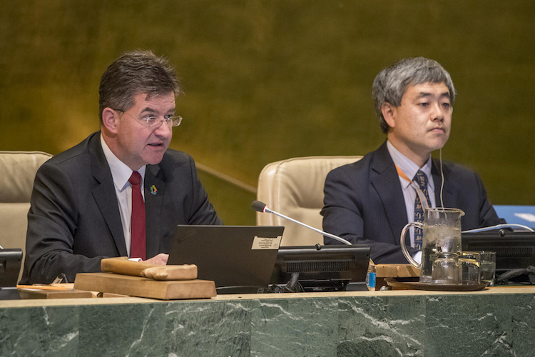Photo: General Assembly President Miroslav Lajčák addressing the Assembly's annual joint debate on the New Partnership for Africa's Development and the '2001-2010: Decade to Roll Back Malaria in Developing Countries, Particularly in Africa.' UN Photo/Cia Pak