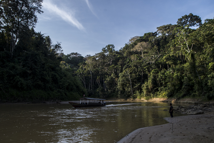 Photo: Courtesy Tenure Facility / Madre de Dios region, Peruvian Amazon.