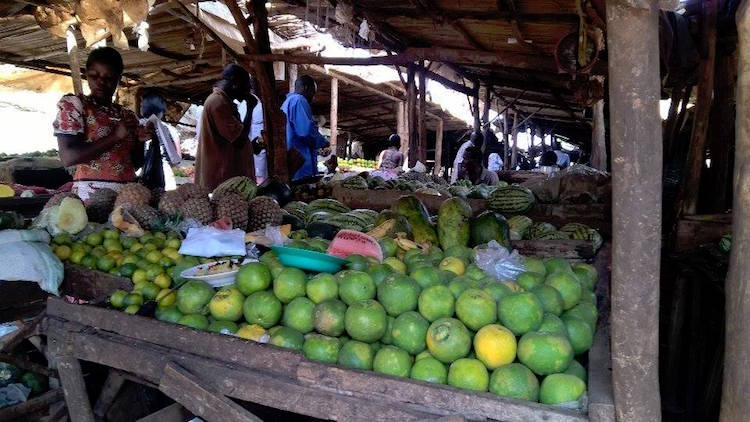 An assortment of fruits on sale at a market in Busia town, Western Kenya, near the Kenya-Uganda border. Credit: Justus Wanzala | IDN-INPS