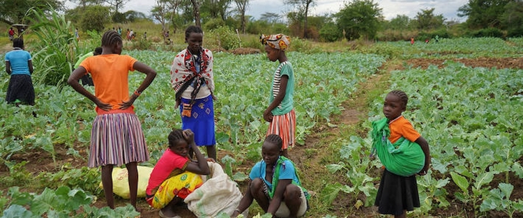 Photo: Global food supply chains are complex and include these kale farmers in Uganda. Credit: Africa Renewal.