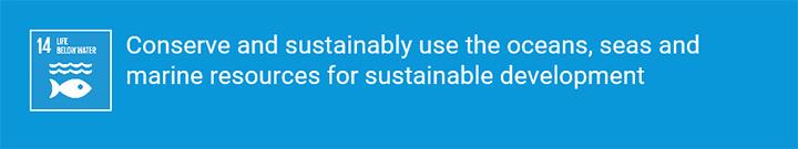 Goal 13+14+15 - SDGs for All