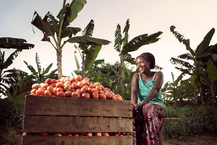 Photo: Olivia Nankindu, 27, surveys the fruits of her labor in the waning afternoon sunlight on her farm near Kyotera, Uganda. Credit: Stephan Gladieu|World Bank
