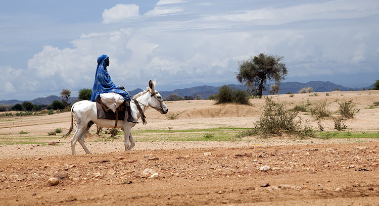 Photo: A woman dressed in blue rides a white donkey through open vast terrain surrounded by mountains. Credit: UN.